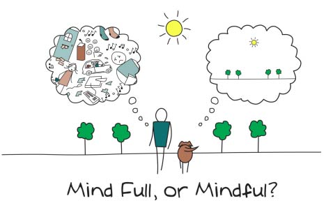 MInd Full ou Mindful